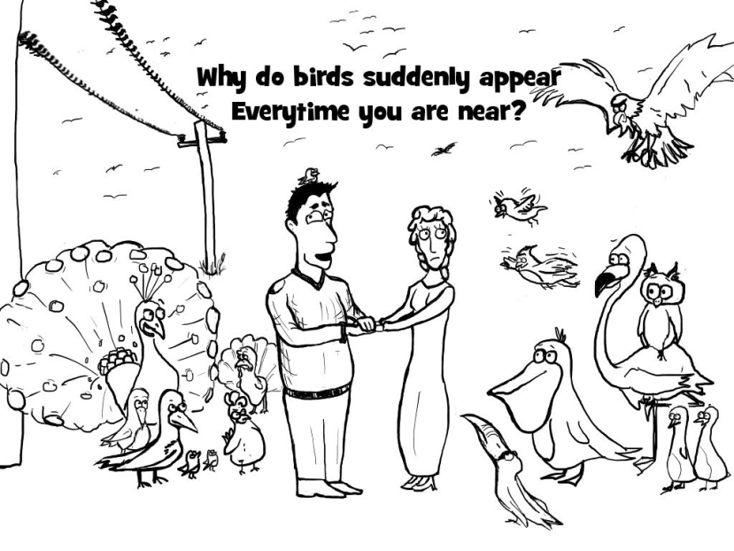 Why do birds suddenly appear every time you are near?